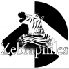 The Zebraphiles